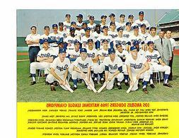 1966 LOS ANGELES DODGERS NL CHAMPS TEAM  8x10 PHOTO  BASEBAL