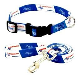 Hunter Los Angeles Dodgers Pet Nylon Collar and Leash; XS; N
